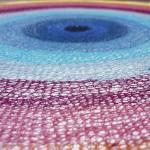 Detail concentric circle
